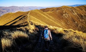 Abécédaire Nouvelle-Zélande : Le PVT en 26 mots