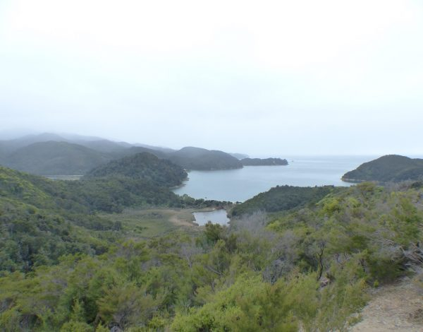 Nouvelle-Zélande : Le parc national d'Abel Tasman