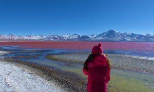 Bilan : 3 semaines en Bolivie