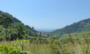 Dawei et les plages paradisiaques du Myanmar