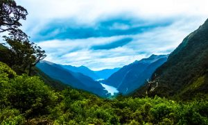 Doubtful Sound : Le bruit du silence