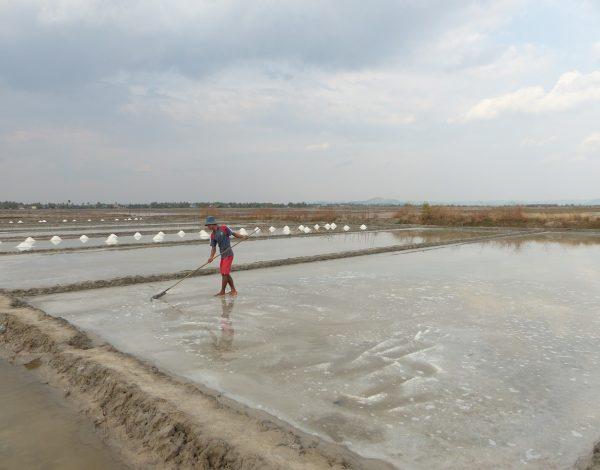 Kampot & Kep : Crabe au poivre et pincée de sel