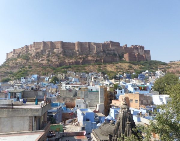 Rajasthan – Jodhpur, la ville bleue