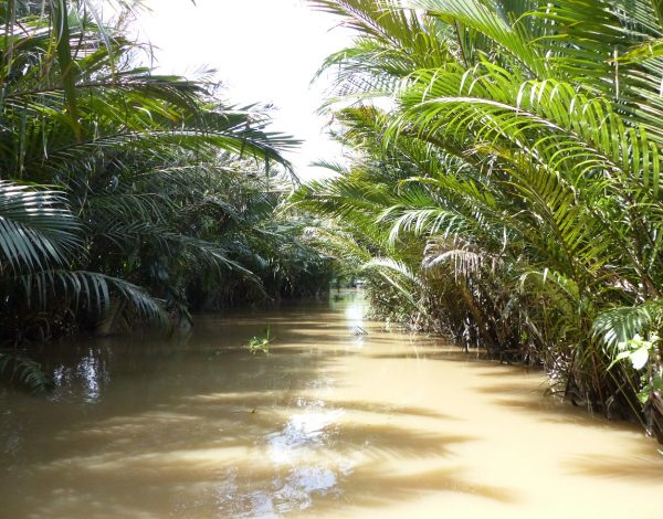 Le Delta du Mékong depuis Saigon