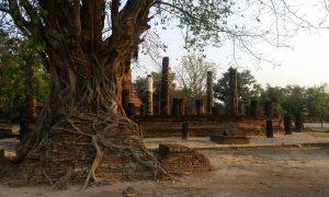 Sukhothaï à vélo