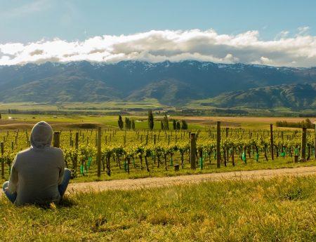 PVT Nouvelle-Zélande : Liberté, Égalité, Travailler, Formalités