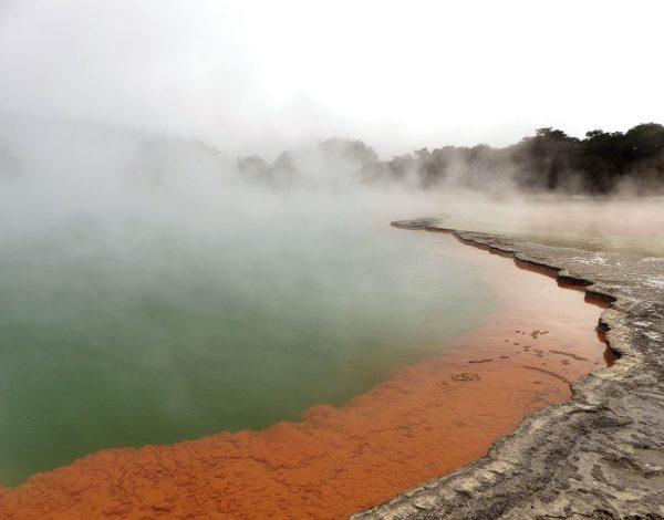 Nouvelle-Zélande : Le parc national de Wai-O-Tapu