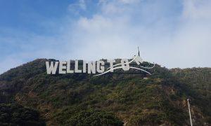 Nouvelle-Zélande : Vent d'enthousiasme à Wellington