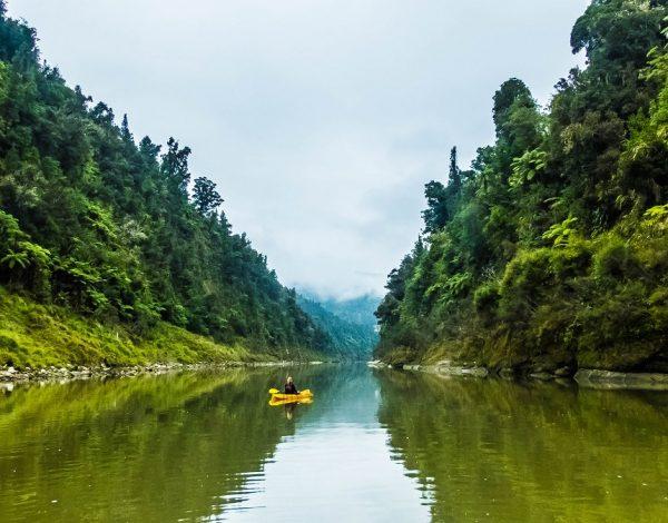 Whanganui Journey : Souquez les artimuses